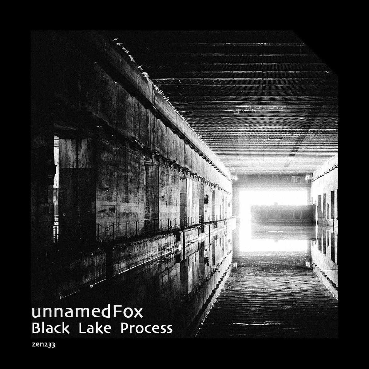unnamedFox – Black Lake Process